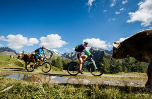 Mountainbike Ahrntal