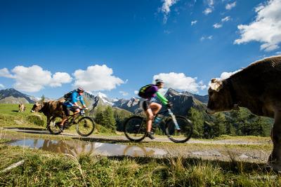 Mountainbike Ahrntal